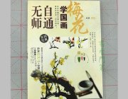 HH012 Hmay Self-taught Painting Book- Plum Blossom